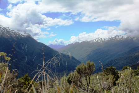 New Zealand's Extraordinary Fiordland (3/6)