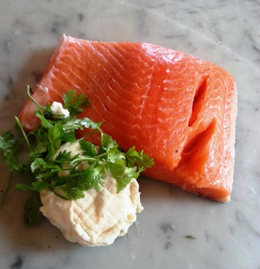 salmon.1