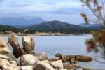 Coast near Tizzano