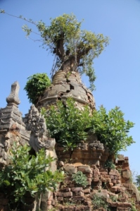 Inn Thein pagoda complex where hundreds of stupas are overgrown with vegetation and crumbling.