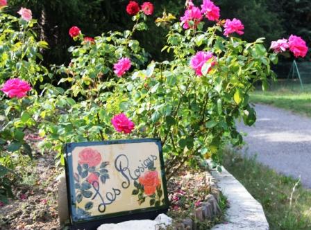 fleurs.2