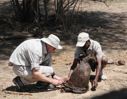 "TJ helps Victor measure the ""most amazing elephant poop."""