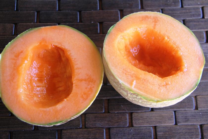 melon.bolg
