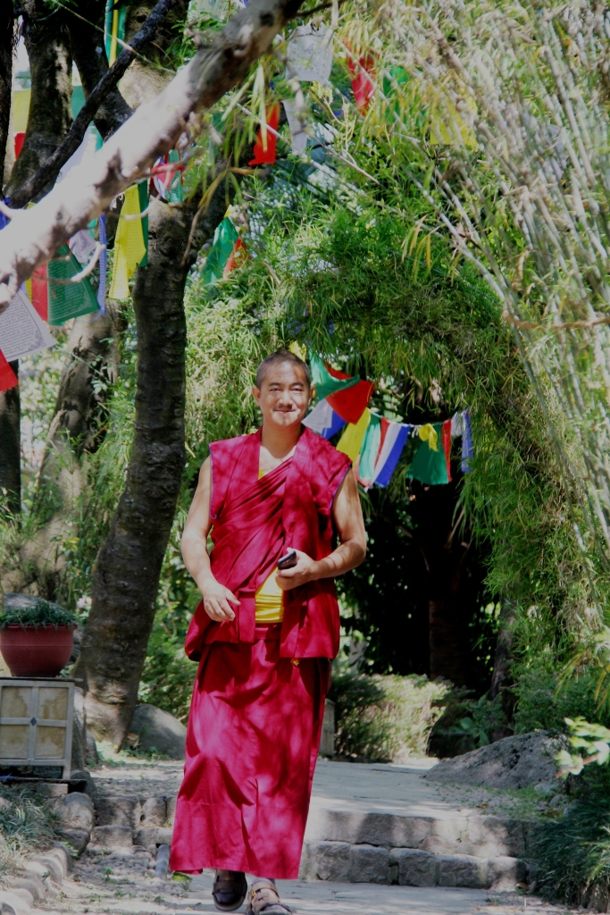 Monk at Norbulingka Institute