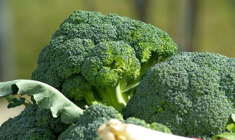 vegetables-673181__480